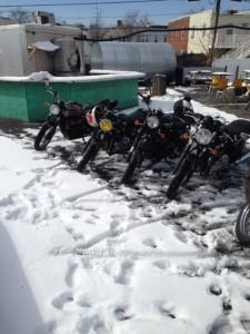 Bardo Snow Bikes